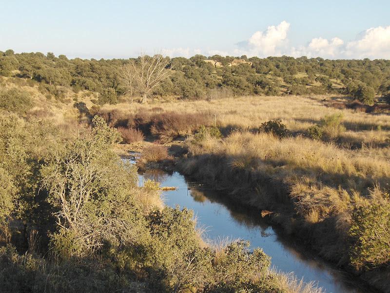 Río Cuzna