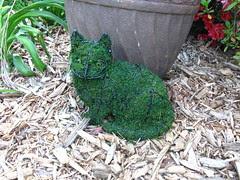 Topi the topiary