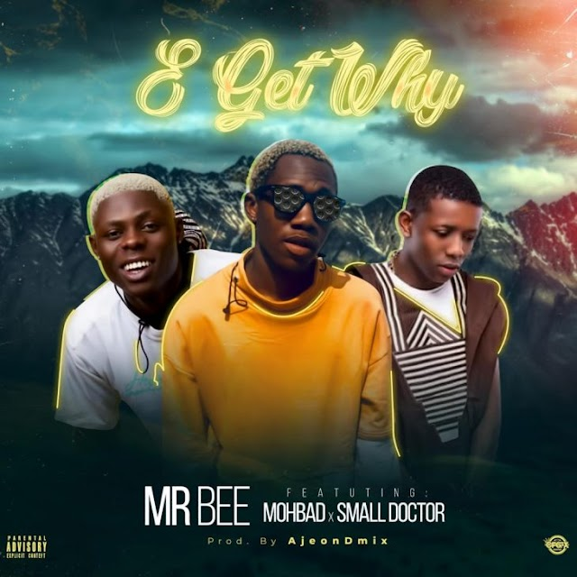 [BangHitz] MUSIC : MR Bee Ft. Mohbad & Small Doctor – E Get Why