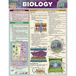 BarCharts 9781423219538 Biology Quickstudy Easel