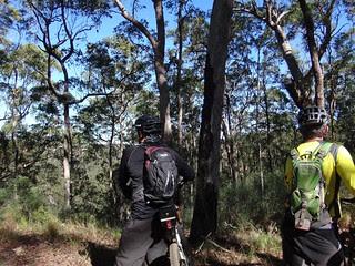 Lockyer National Park