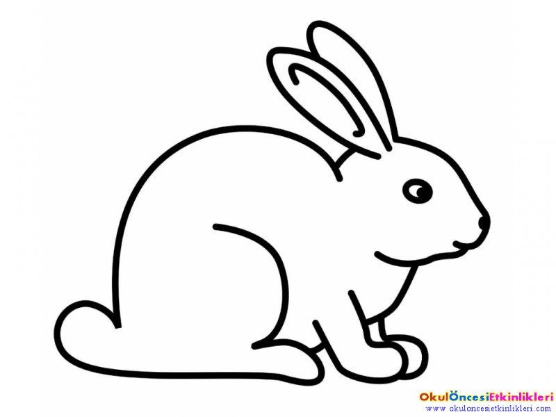 Okul öncesi Etkinlikleri Hayallerinizi Sınırlamayın Tavşan Kalıp