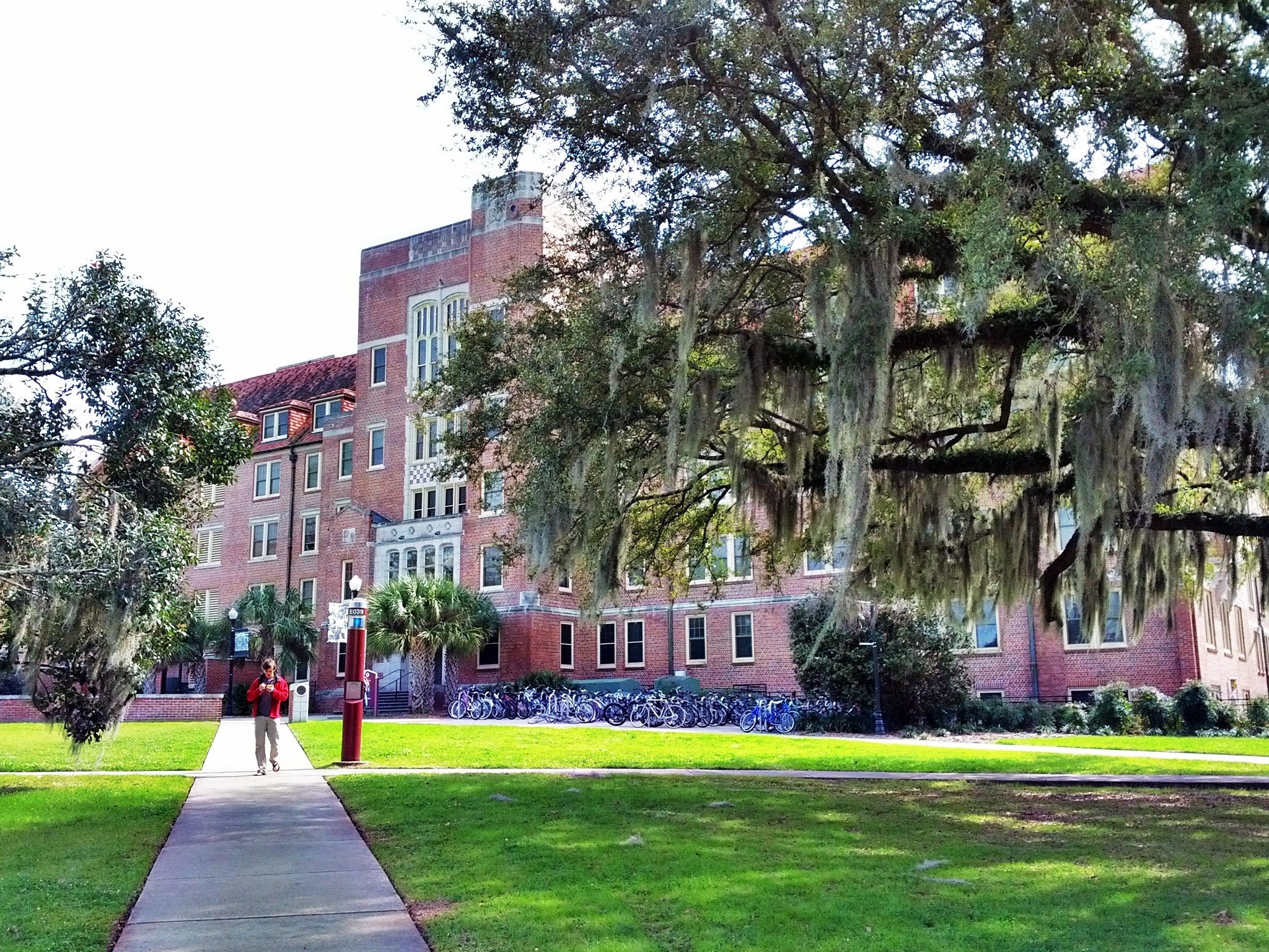 Florida State University Campus Tallahassee Florida Visions Of