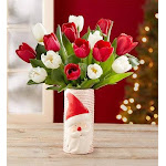 Santa's Merry Christmas Tulips by 1-800 Flowers