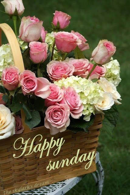 Happy Sunday Flowers Sunday Myniceprofilecom