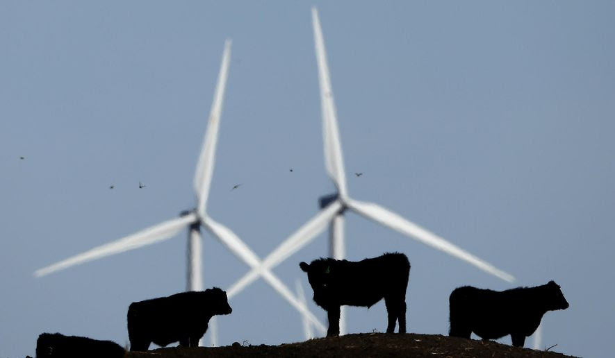 FILE - In this Dec. 9, 2015 file photo, cattle graze in a pasture against a backdrop of wind turbines which are part of the 155 turbine Smoky Hill Wind Farm near Vesper, Kan. Even if President Donald Trump withdraws U.S. support for the Paris climate change accord, domestic efforts to battle global warming will continue. Dozens of states and many cities have policies intended to reduce emissions of greenhouses gases and deal with the effects of rising temperatures. Even in red states, many consider flood prevention and renewable energy are considered smart business. (AP Photo/Charlie Riedel, File)