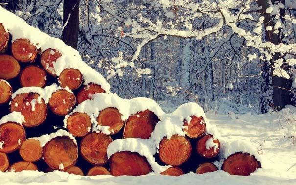 Ο Χειμώνας σε 35 υπέροχες φωτογραφίες (31)