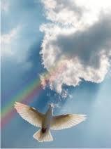 Yeshua.turbulencetocalm