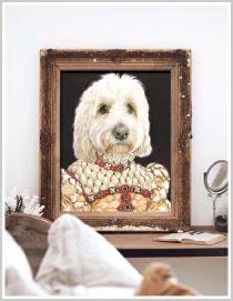theme portraits quirky victorian vintage pet portraits