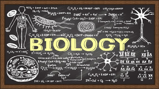 I will help you in your Biology Homework and lessons