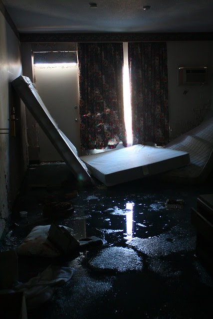 the aquatic suite