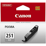 Canon - 251 Ink Cartridge - Gray