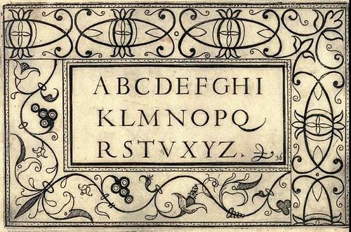 Bertozzi + Zanilla 1604 Lace Typography m