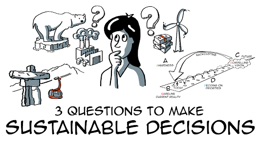 Decisions for sustainability: 3 questions to help you (with real-life example)