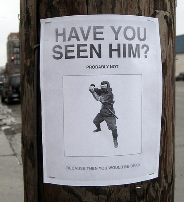 funniest signs on telephone poles 09