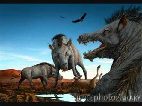animales prehistoricos final cerdo del infierno youtube