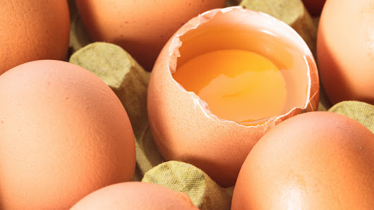 Record Levels of Egg-Related Salmonella Food Poisoning in WA
