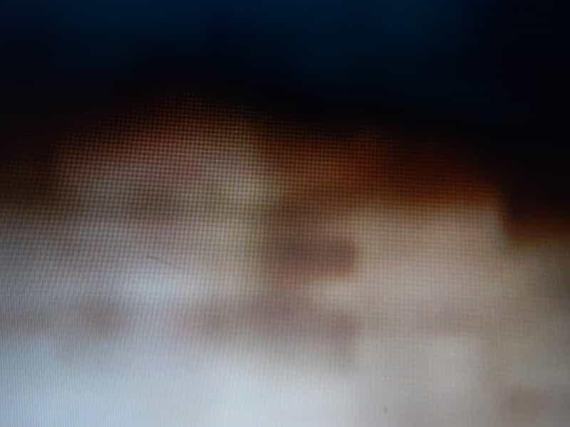 Φωτογραφίες των Ε - ΟΛΥΜΠΙΩΝ - ΑΝΔΡΟΜΕΔΙΩΝ, που αποδεικνύουν την ύπαρξή τους