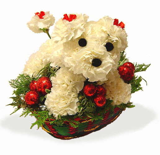 oh my flowers perritos en canasta 4 mascotas