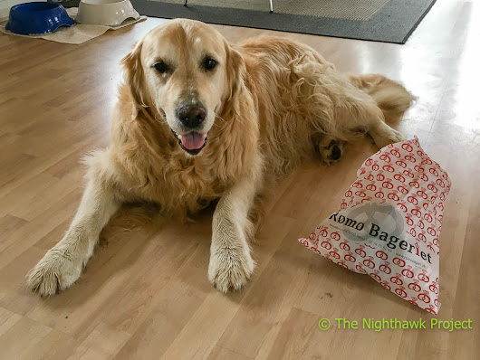 Monday Morning Blues… – Stories from Life in the fast lane Retriever Style