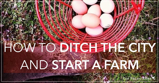 How to Ditch the City and Start a Farm  - The Paleo Mama