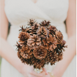 Wedding Wise Wednesday: Pretty Pinecones! | Silver Charm Events
