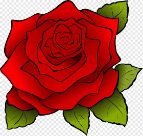 Gambar Bunga Mawar Merah Animasi