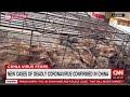 Εκεί που γεννήθηκε ο κορονοϊός: Φίδια, πουλερικά, θαλασσινά ...και πτώματα ζώων στην αγορά του Ουχάν (Video)