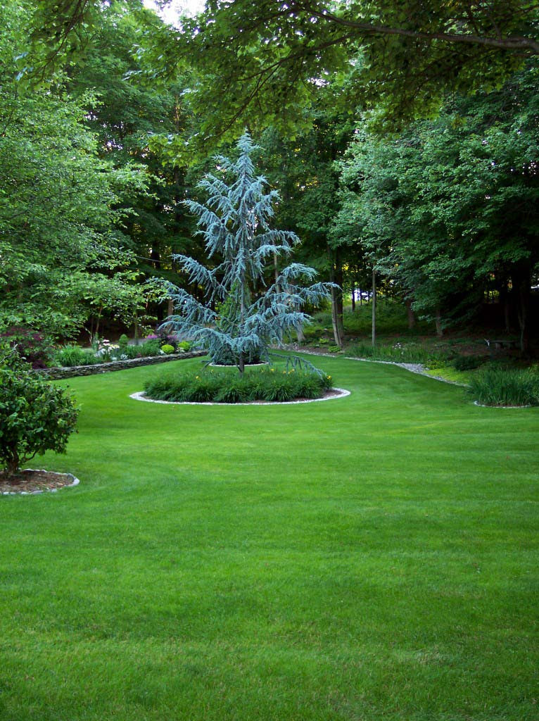 Kellys Landscaping Lawn Care Milford ct 1 766x1024