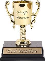 Caption Award copy