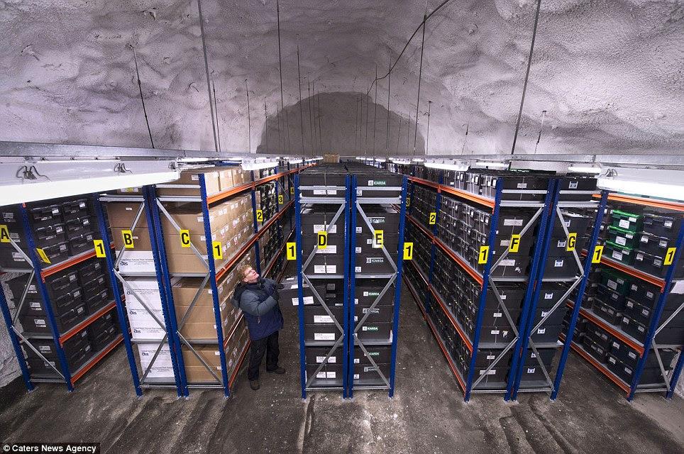 Fontes: Carey Fowler no banco de sementes Doomsday em Longyearbyen, Svalbard, na Noruega, que protege a oferta de alimentos do mundo