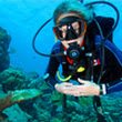 Talk to Montreal's scuba diving experts at Action Scuba