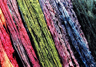 Skeins of yarn dyed with natural dyes
