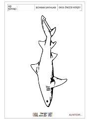 Komik Fipixde Sevimli Köpek Balığı Boyama Sayfaları