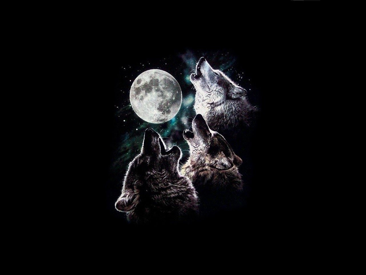 Wallpaper Koral Hd Wallpaper Wolf Moon Hd