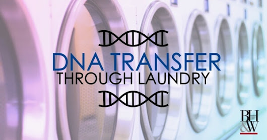 DNA Can Be Innocently Transferred Through a Load of Laundry