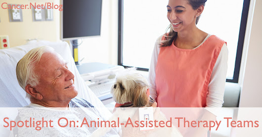 Spotlight On: Animal-Assisted Therapy Teams