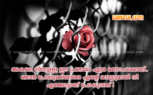 List Of Malayalam Love Quotes 100 Love Quotes Pictures And Images