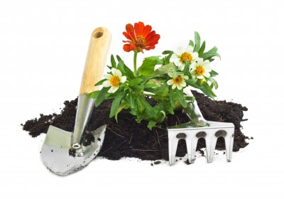 Prevent Back Pain While Gardening -