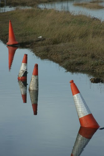 tide floods synchronised cone competition by ultraBobban