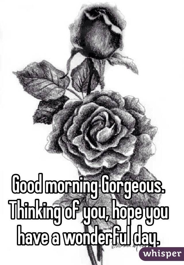 Good Morning Gorgeous Thinking Of You Hope You Have A Wonderful Day