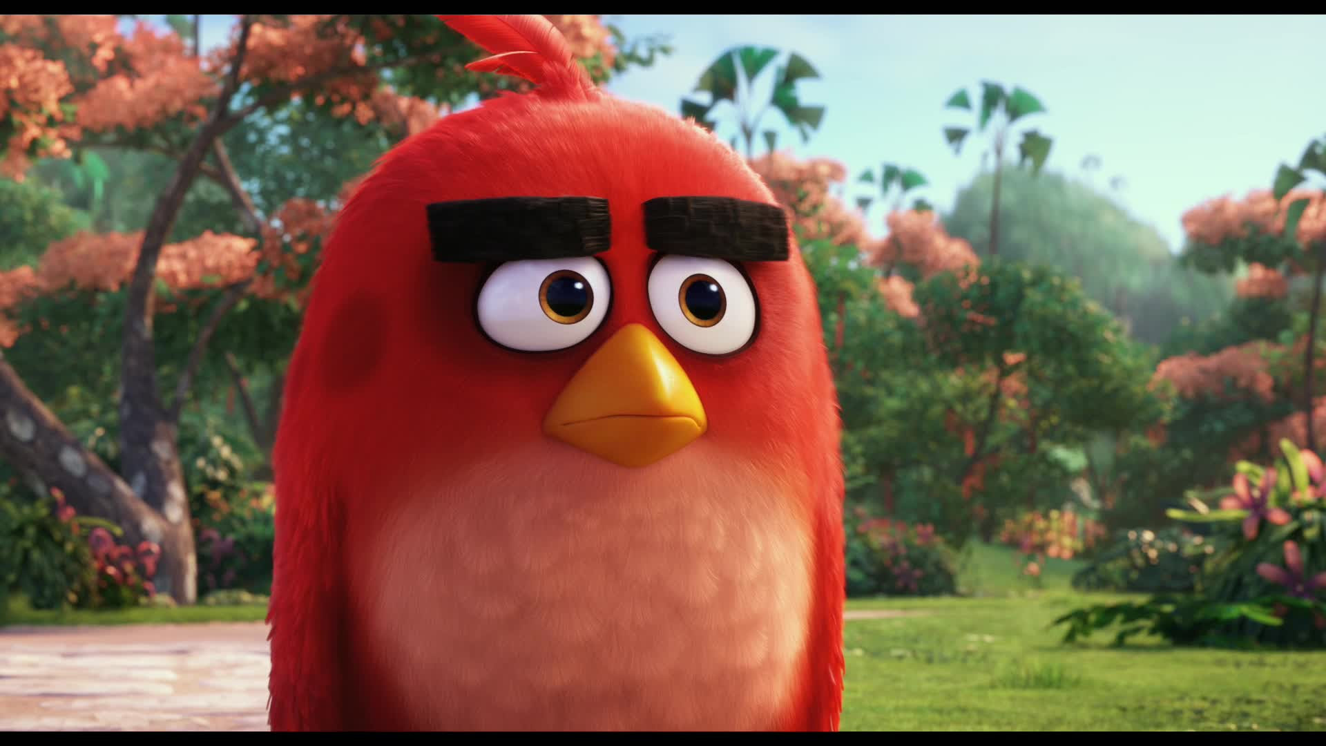 Angry Birds Trailer 2 金海报 Goldposter