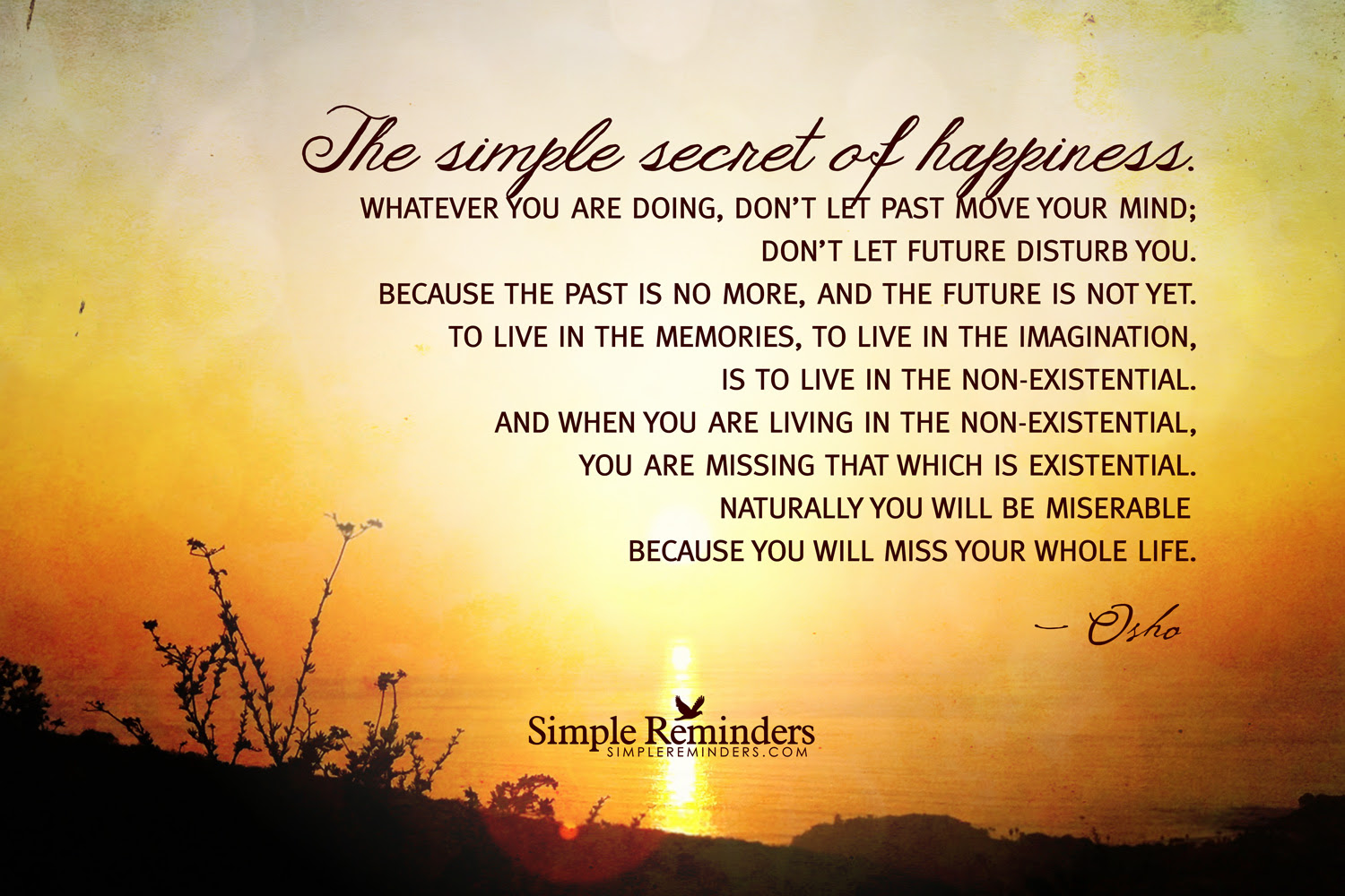 Quotes About Simple Happiness 72 Quotes