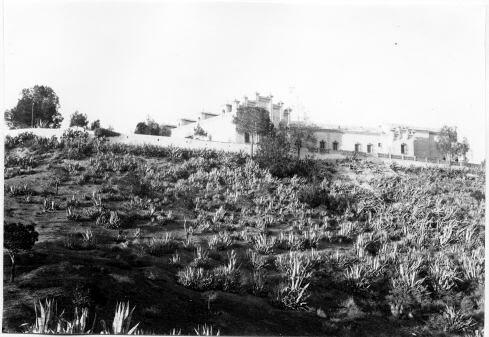 Palacio de la Sisla? © Fondo Rodríguez. archivo Histórico Provincial. JCCM. Signatura Album4-1495