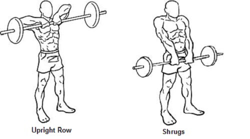 Traps Workout Tips