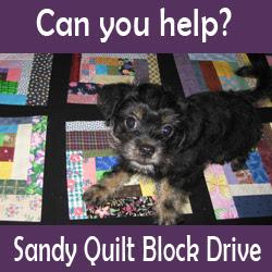 Sandy Quilt Block Drive
