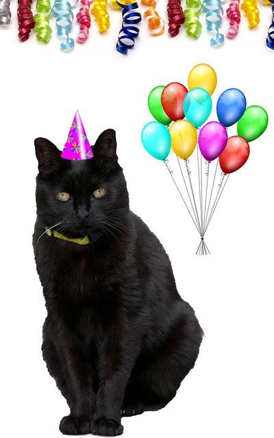 Happy Birthday Huffle