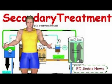 Secondary Biological Wastewater Treatment Process