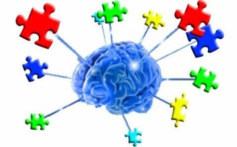 brain_and_puzzle_hero