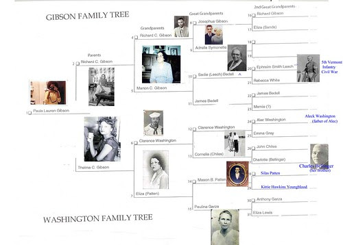 Gibson Washington Families Tree